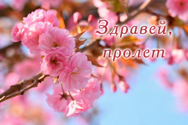 Картичка за Първа пролет
