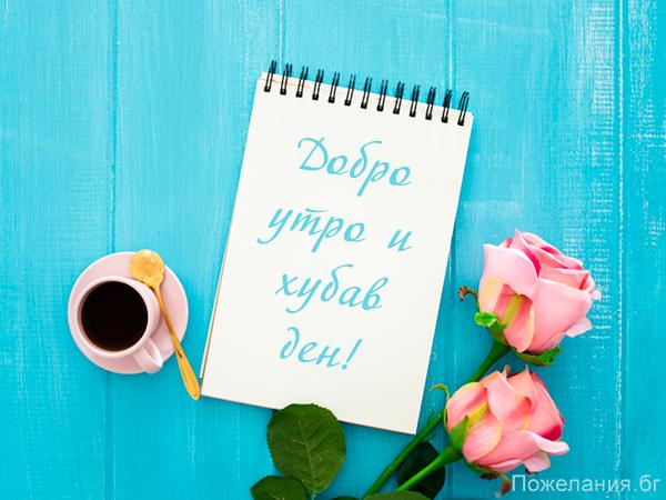 Картичка за добро утро и хубав ден